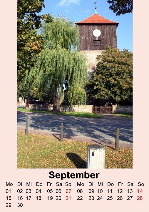 Dieses Bild hat ein leeres alt-Attribut; sein Dateiname ist 2008-septembertrauerweide.jpg.